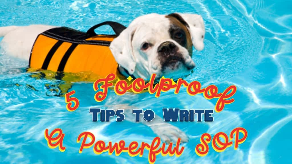 Tips for SOP