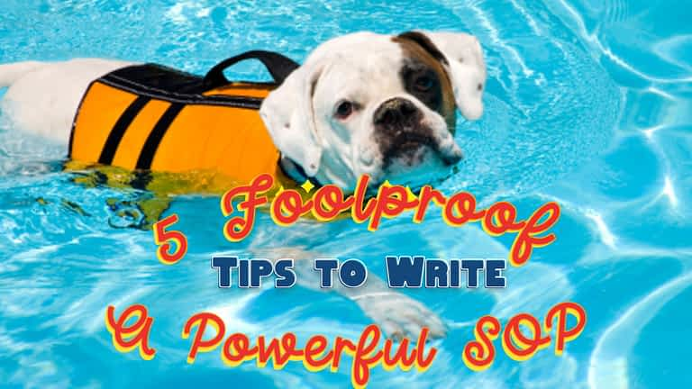 5 Foolproof Tips to Write a Powerful SOP